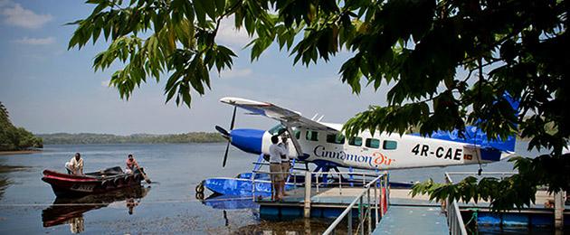 L18-Cinnamon-Air