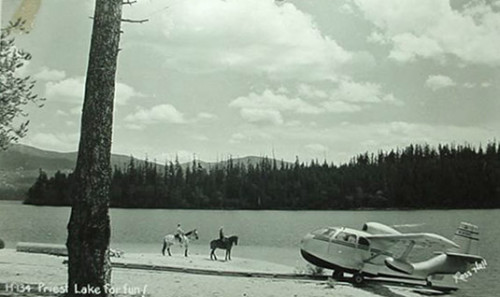 Priest Lake Horses